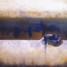 Osmose, peinture contemporaine