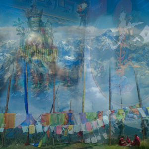 Composition photographique de Maya leutert